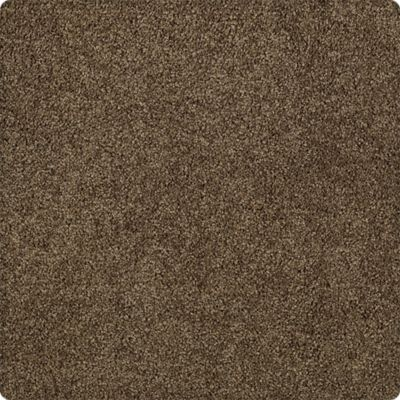 Karastan Elegantly Soft Due West Brown 43599-9879