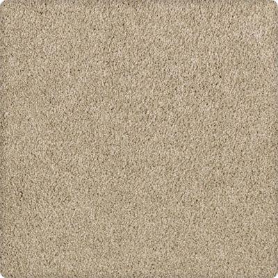 Karastan Enhanced Beauty Mesquite Chip 43603-9748