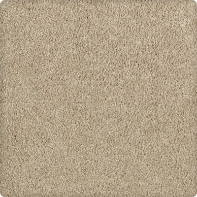 Karastan Enhanced Beauty Mesquite Chip 43603-9748