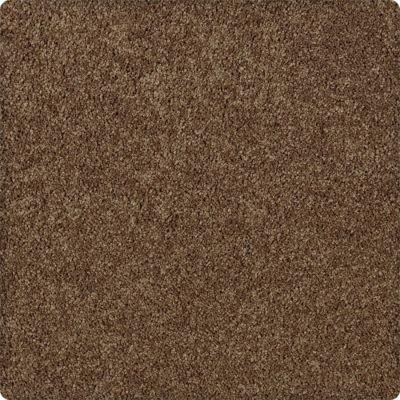 Karastan Enhanced Beauty Canvas Rust 43603-9898