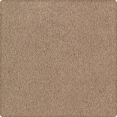 Karastan Luxurious Beauty Whole Grain 43629-9768