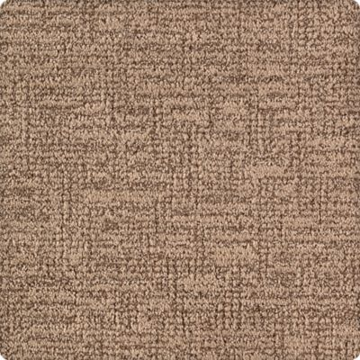 Karastan Artistic Charm Driftwood 43630-9875