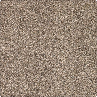 Karastan Desired Elegance Whole Grain 43640-9767