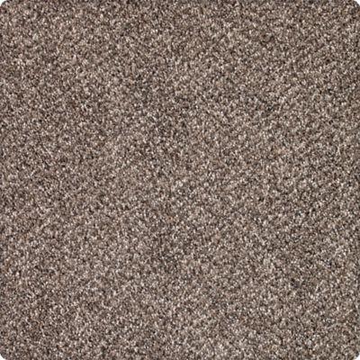Karastan Desired Elegance Mineral Brown 43640-9789