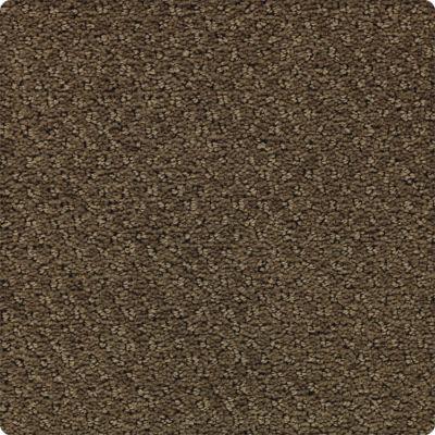 Karastan Greenwich Estate Enduring Bronze 43654-9866