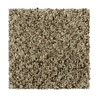 Mohawk Dramatic Color II Taupe Whisper 2X84-740