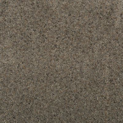 Karastan Remarkable Grace Granite 43669-9984