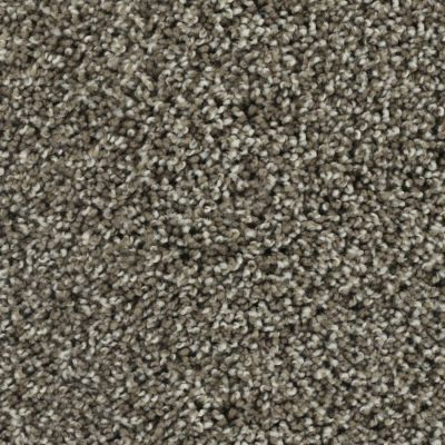 Karastan Stylish Estate Taupe Shadow 3D74-9869