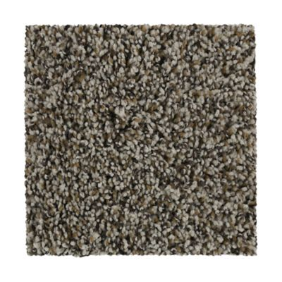 Mohawk Treasured Ambience Silk Canvas 3C73-829