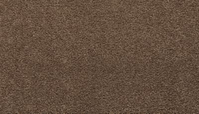 Mohawk Splendid Comfort Cattails 3F92-887