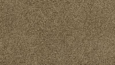Mohawk Lavish Tradition Stardust 3G58-934