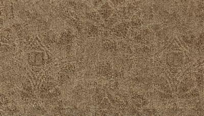 Karastan Intriguing Allure Sienna 43707-9750