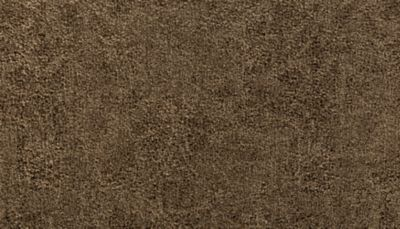 Karastan Intriguing Allure Brushwood 43707-9863