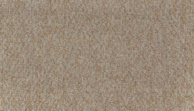 Mohawk Joyful Texture Wrangler 3H14-800