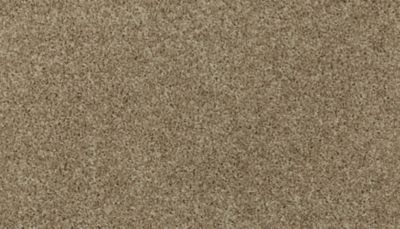 Mohawk Sophisticated Tones Warm Almond 3H37-725