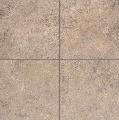 Mohawk Pantego Bay Porcelain Brown Shell T772-PB52-18×18-FieldTile-Porcelain