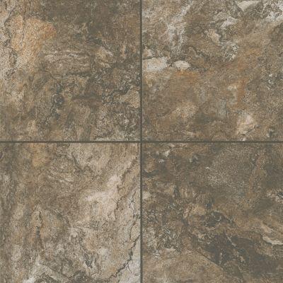 Mohawk Stonehurst Floor Porcelain Copper Shore T805-SH08-18×18-FieldTile-Porcelain