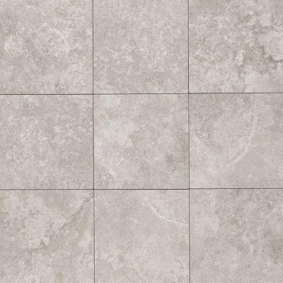 Mohawk Senato Floor Porcelain Gris T813-SE98-12×12-FieldTile-Porcelain