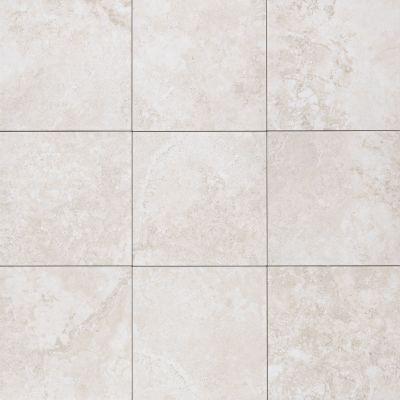 Mohawk Senato Floor Porcelain Blanc T813-SE96-18×18-FieldTile-Porcelain