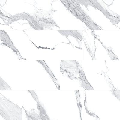 Mohawk Montrelle Porcelain Statuario Blanc T845-MN01-24×24-FieldTile-Porcelain