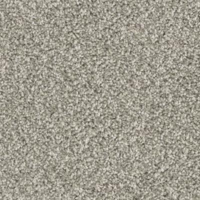 Phenix Foresight FE105-933