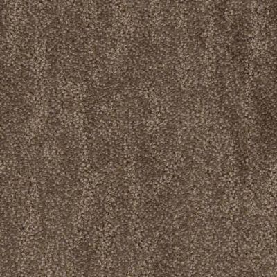 Phenix Zestful MB105-898