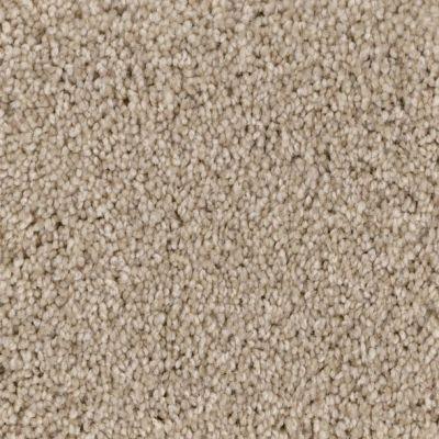 Phenix Coastal Sand Dune ST159-03