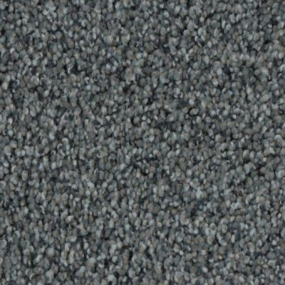 Phenix Charisma Gray Tint ST162-06