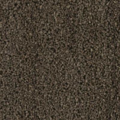 Phenix Debonair Bold ST165-667
