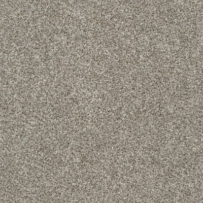 Value Collections Monte Carlo Shaw Floors  Oatmeal 00108-5E433