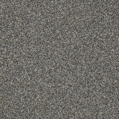 Value Collections Monte Carlo Shaw Floors  Fog 00503-5E433