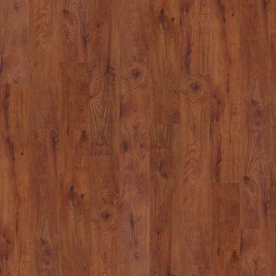 Shaw Floors Vinyl Residential Metro Plank Cherry 00650_0129V