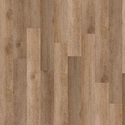 Shaw Floors Resilient Residential New Market 6 Tribeca 00214_0145V