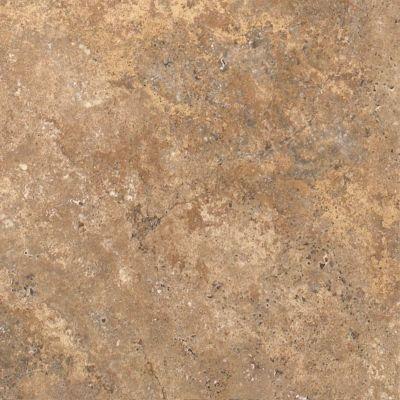 Shaw Floors Resilient Residential Resort Tile Hot Cocoa 00750_0189V