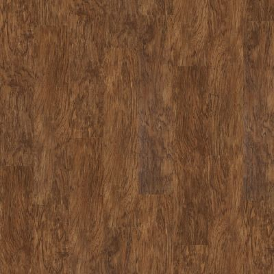 Shaw Floors Vinyl Residential Sumter Plus Spice Box 00355_0225V