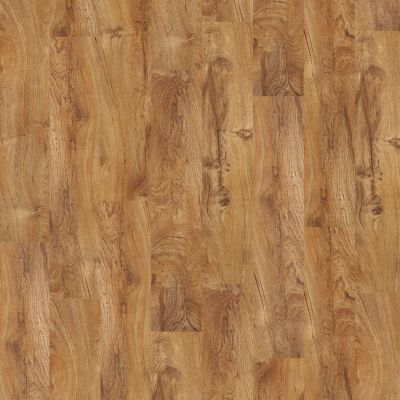 Shaw Floors Vinyl Residential Sumter Plus Tropic 00600_0225V