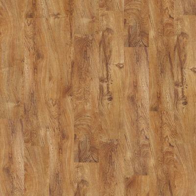 Shaw Floors Resilient Residential Sumter Plus Tropic 00600_0225V