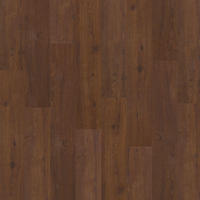 Shaw Floors Resilient Residential Sumter Plus Ashville 00700_0225V