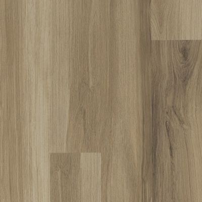 Shaw Floors Resilient Residential Paladin Plus Almond Oak 00154_0278V