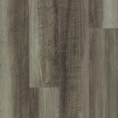 Shaw Floors Resilient Residential Paladin Plus Oyster Oak 00591_0278V