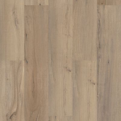 Shaw Floors Resilient Residential Paladin Plus Driftwood 01056_0278V
