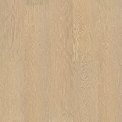 Shaw Floors Resilient Residential Paladin Plus Oceanfront 02012_0278V