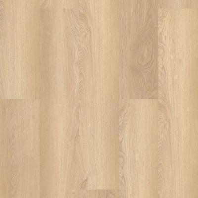 Shaw Floors Resilient Residential Paladin Plus White Sand 02013_0278V