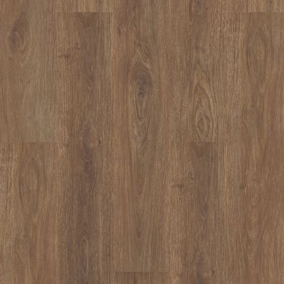 Shaw Floors Resilient Residential Paladin Plus Boardwalk 07088_0278V