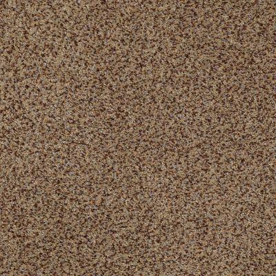 Anderson Tuftex SFA New Direction Sandstorm 00756_02SSF
