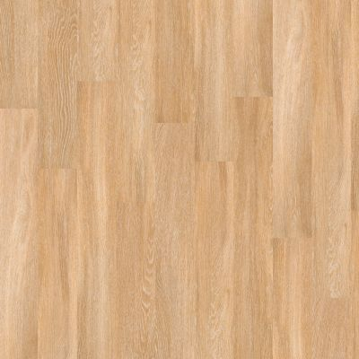 Shaw Floors Vinyl Residential World's Fair 12mil Paris 00343_0319V