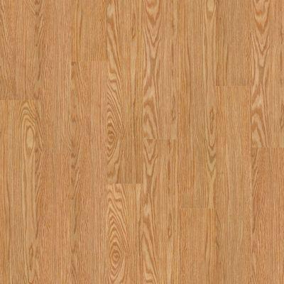 Shaw Floors Resilient Residential Klamath Shasta 00243_0336V