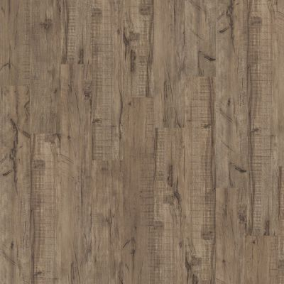 Shaw Floors Resilient Residential Easy Street Plank Sagebrush 00542_040VF
