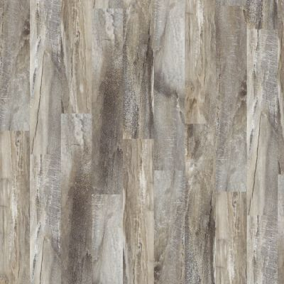 Shaw Floors Vinyl Residential Easy Style Five Spice 00546_042VF