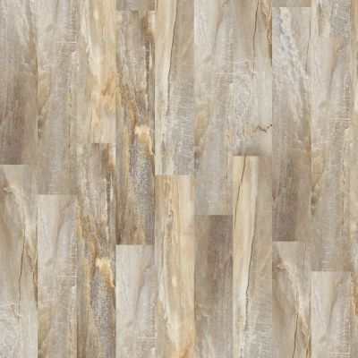 Shaw Floors Resilient Residential Easy Style Ginger 00605_042VF